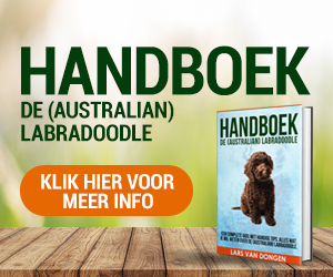 Banner Handboek de (Australian) Labradoodle