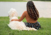 Bronchitis bij een hond_ symptomen, oorzaken en behandelingen-min